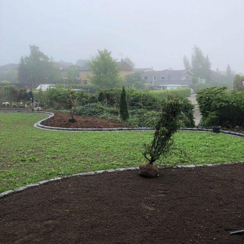 Have der bliver beplantet med træer til inspiration